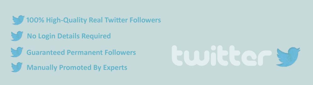 twitter followers Provider in Surat